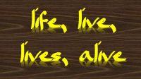 arti life, live, lives, alive