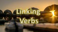 contoh linking verb